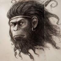 Year of Monkey by arthurgain