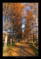 Mellow Autumn by Frider