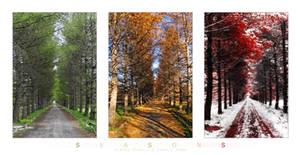 Three Seasons by Frider