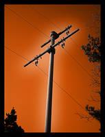 Electric Golgotha by ulro