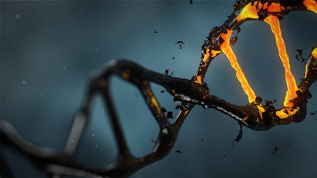 DNA-Human Biology (science assignment) by thewriter197