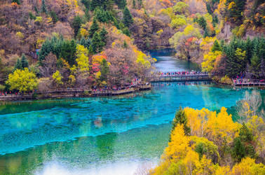 Jiuzhaigou Forest (magical forest) by thewriter197
