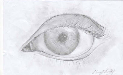 Eye by silveryfeather208