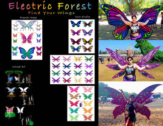 Electric Forest Art Installation-Find Your Wings by KaeMcSpadden