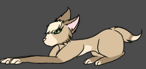 Request 4 - Kitten being frisky by AshFox8091