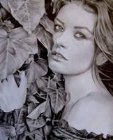 graphite - Catherine Zeta Jones by MAUZIS