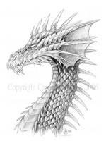 Dragon- by Aerin-Kayne