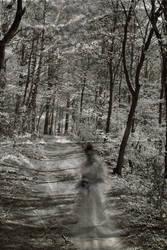 Ghost Walk by woodfaery