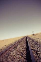 Desert Train by woodfaery