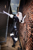 Marvel: Black Cat by hibiscus-sama