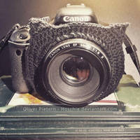 Cat Ears for my camera by hoschie