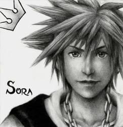 Sora by friedChicken365