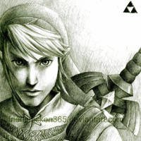 Link Revisited by friedChicken365