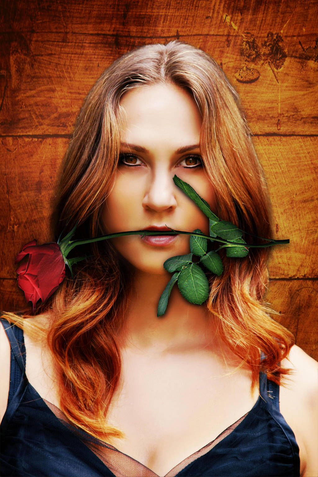 Red Rose by 05-A-D-R-I-A-N-A-50