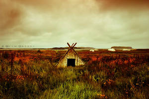 L'Anse aux Meadows by ellegottzi