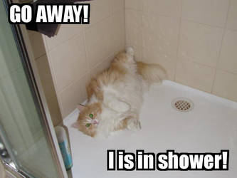 I is in shower by man-in-shack