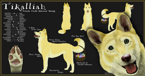 Tikalliah's Reference Sheet by NoelleMBrooks