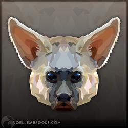 Aardwolf by NoelleMBrooks
