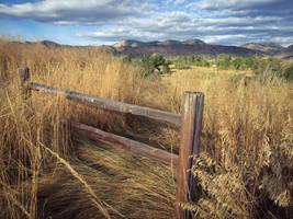 Forgotten Gate by JANorlin