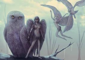 Snowy Owls by TobyFoxArt