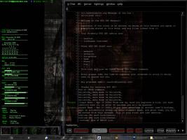 Gentoo Enlightenment Desktop_1 by hellstr0m