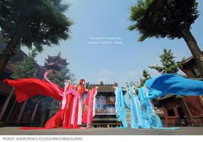 Paladin by ouyangyangguang