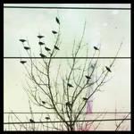 Untitled by Izaaaaa