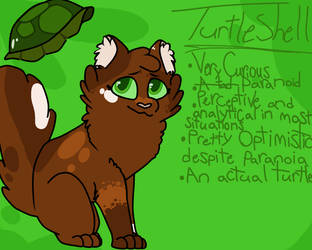 Turtleshell reference by Meowbecca