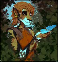Explorer by Acaciathorn
