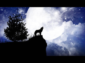 Wolf by m-a-t-h-e-s