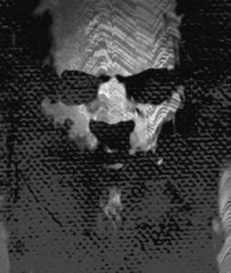 piofoks's Profile Picture