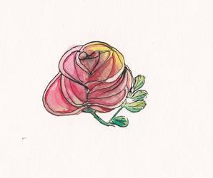Rose sketch by Takiari-xXXx-Meyrimo