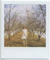 polaroid81 by firstkissfeelings