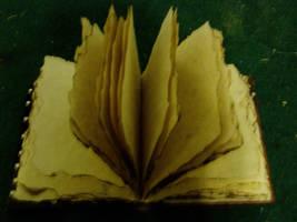 open book by necrostock