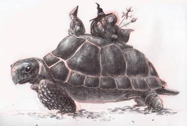 Turtle by SkaveR-Z