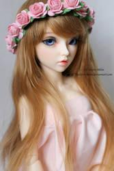 Roze by toshiro-sthlm