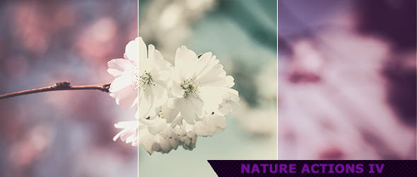 Nature Photoshop Actions 4 by ViktorGjokaj