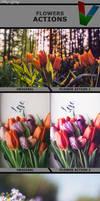 Flower Actions 1 by ViktorGjokaj