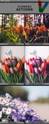 Flower Actions 1 by ViktorGjokaj