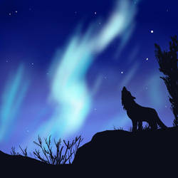 Aurora Howling by Endivinity