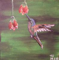 hummingbird by bing4288