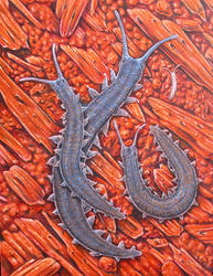 Velvet Worms by JacquelineRae