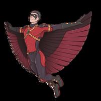 robin's flight by NarciSSai