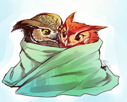Owl Wrap! by Naaura