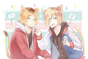 Kitties by Chubilee