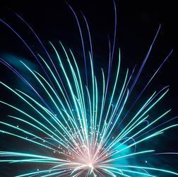 Flower of Light by LoboSabio