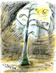 Tree'N 'Ktober -Day 26 - Stretched by Kakhi-dot-dot-dot
