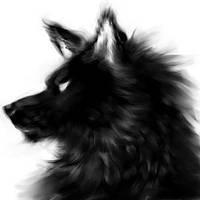 wolf's head by Mootdam