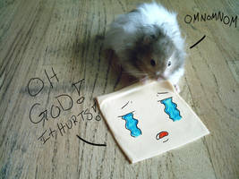 when hamsters attack by mookieandpookie