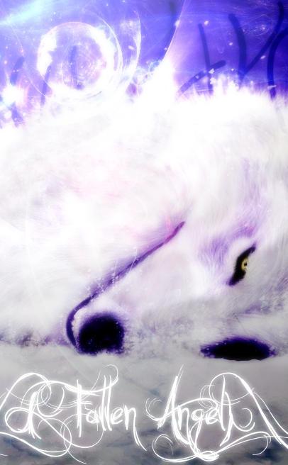 FallenAngel1991's Profile Picture